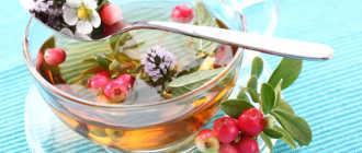 Что добавляют в чай, польза и вред добавок