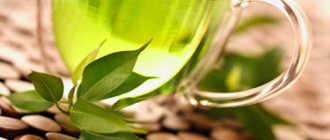Экстракт зеленого чая. Сферы применения