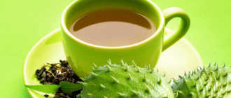 Чай с саусепом: напиток из экзотического фрукта