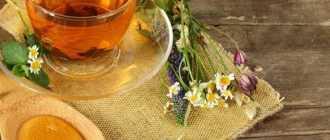 Тонизирующий чай: заряд бодрости на весь день