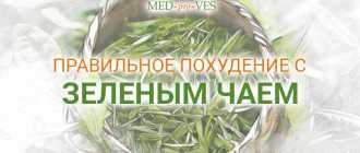 Как правильно пить зеленый чай, чтобы похудеть. Правила заваривания и применения.