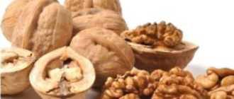Отвар из скорлупы грецких орехов