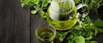 Действие зеленого чая на организм, польза и вред
