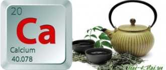 Зеленый чай вымывает из организма кальций или нет, есть ли опасность