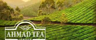 Ахмад чай — качество превыше амбиций